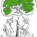 Radford Arboretum a Short Guide