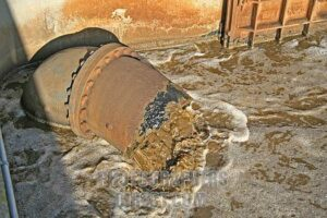 Raw sewage Flows into Hooe