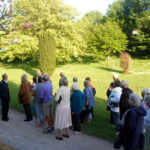 Annual Radford Park Arboretum Walk and Talk – 15th May