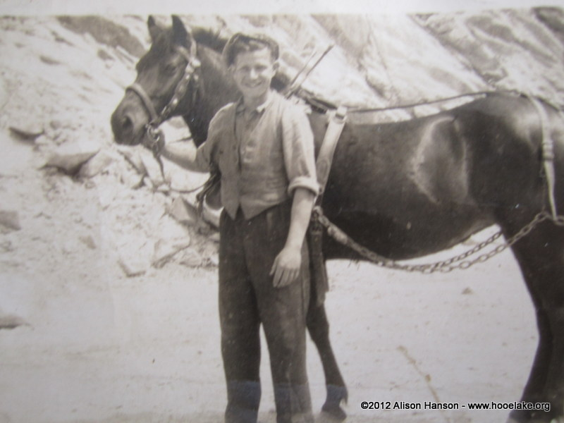 Caleb Carder (jnr) as a teenager working with the pony used to pull the cart full of rock out of the quarry