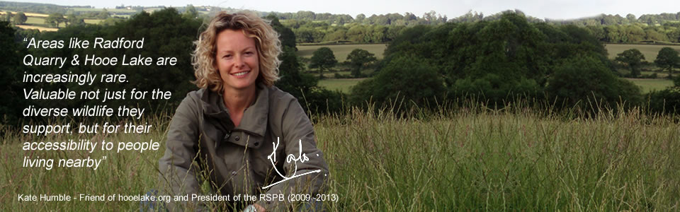 Kate Humble on the planning refusal to build in Radford Quarry
