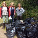 Radford Arboretum Park Volunteers – Newsletter No 1